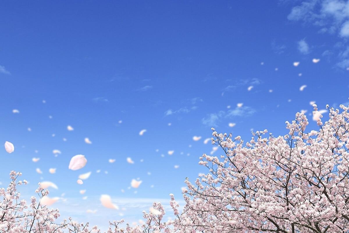 「春が来た」ドラマ あらすじ